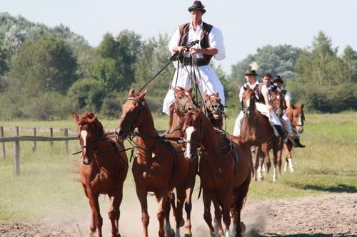 Ungarische Puszta Grosse Und Kleine Puszta Reiter Pferde