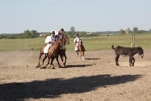 reiterspiele mit pferd